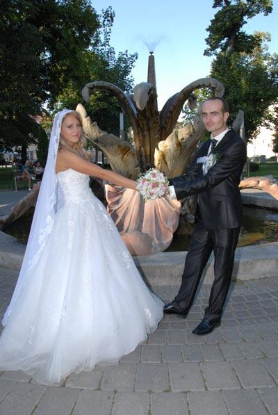 vencanje Tomica